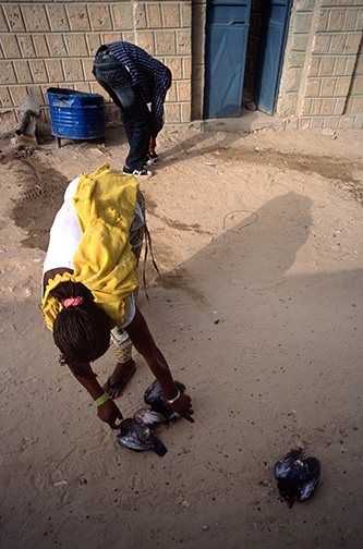 Residents kill doves for a meal in a dusty lane in the old city of Timbuktu. © Kevin Moloney, 2008.